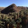 Photos from Palm Desert