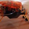 Bug robot