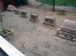 These graves were below street level outside our restaurant