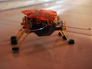 BugRobotFront