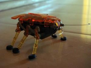 BugRobotSide