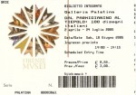 Ticket to enter the Palazzo Pitti