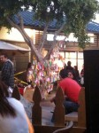 A tree with notes attached in Little Tokyo