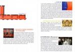Tamo pamphlet p. 4