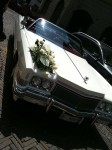 The wedding party drove a Caddy