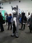 A furry, er, um, a guy in a donkey outfit