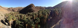 A panorama from above of the canyon floor